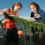 Students studying seaweed