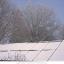 Photo, What Caused the Power Failure in Texas_IE Cleantech Corner intern Sascha Medina